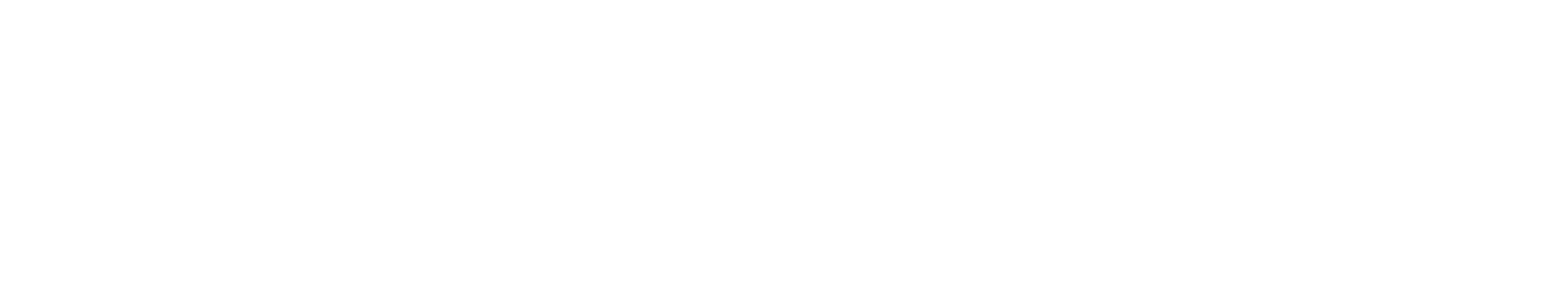 NAST logo - National Association of State Treasurers
